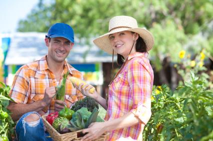 Organic Gardening iStock_000018068890XSmall